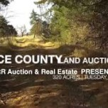 Rice County Land Auction- Peters