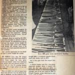 Antique Capital Article